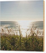 Sun Star At The Beach Wood Print