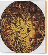 Sun - The Star Sign Of Lion Wood Print