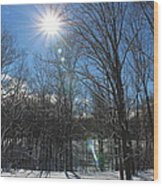 Sun Though The Trees  Wood Print