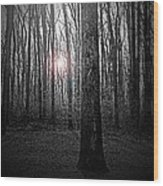Sun Thru The Trees At Twilight Wood Print
