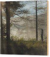 Sun Up At Lowell Lake 2 Wood Print