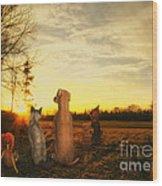 Sun Worshipers Wood Print