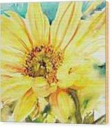 Sun Worshipper Wood Print