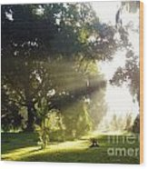 Sunbeam Landscape Wood Print