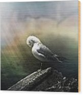 Sunbeam On Seagull Wood Print