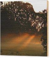 Sunbeams And Fog Wood Print