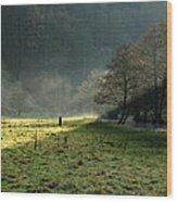 Sunbeams And Mist - Wolfscote Dale Wood Print