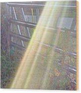 Sunbeams Over Gate Wood Print