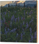 Sunbeams Over Rainier Wood Print