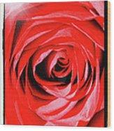 Sunburst On Red Rose With Framing Wood Print