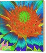 Sunburst - Photopower 2244 Wood Print