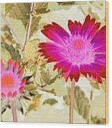 Sunburst - Photopower 2251 Wood Print