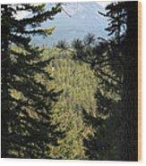 Suncadia Wood Print