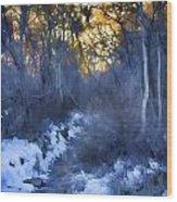 Sundance Aspen Trail Wood Print