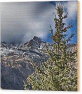 Sundance Aspen-utah V2 Wood Print