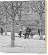 Sunday Afternoon In A Paris Park Wood Print