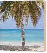 Sunday Palm Wood Print