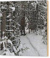Sundling Creek Snowshoe Wood Print