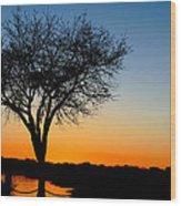 Sundown In South Carolina Wood Print by Ella Char