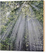 Sunfall Wood Print