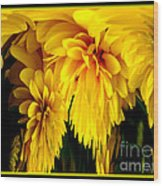 Sunflower Abstract 1 Wood Print