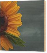 Sunflower And A Storm Wood Print