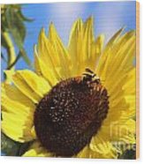 Sunflower And Bee-3879 Wood Print