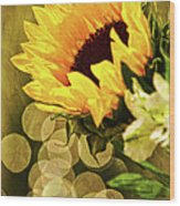 Sunflower And The Lights Wood Print