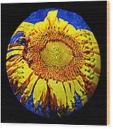 Sunflower Baseball Square Wood Print