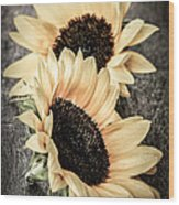 Sunflower Blossoms Wood Print