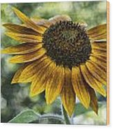 Sunflower Bokeh Wood Print