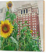 Sunflower City Wood Print