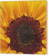 Sunflower Closeup Wood Print