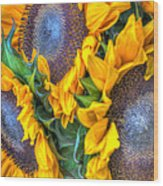 Sunflower Delight Wood Print
