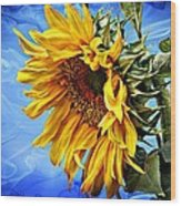 Sunflower Fantasy Wood Print