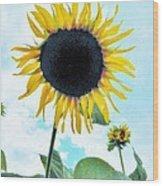 Sunflower Fields Forever One Wood Print