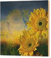 Sunflower Garden Wood Print