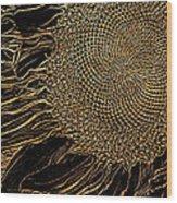 Sunflower Gold Leaf Sketch Wood Print