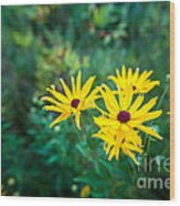 Sunflower Group Session Wood Print