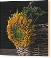 Sunflower In A Basket Wood Print
