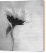 Sunflower In Profile Wood Print