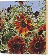 Sunflower Layers Wood Print