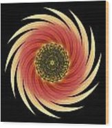 Sunflower Moulin Rouge Vii Flower Mandala Wood Print