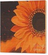 Sunflower Mystique Wood Print