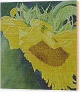 Sunflower Original Oil Painting Colorful Bright Sunflowers Art Floral Artist K. Joann Russell  Wood Print