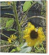 Sunflower Outline 4 Wood Print