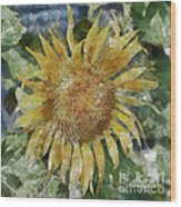 Sunflower Painting Wood Print