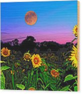 Sunflower Patch And Moon  Wood Print