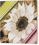 Sunflower Rail Wood Print