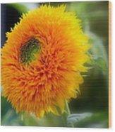 Sunflower Soft Wood Print